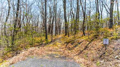 LOT 7 ELK MEADOW DR, AFTON, VA 22920 - Photo 2