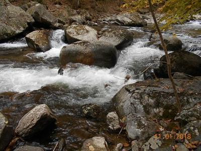 TBD CRABTREE FALLS HWY, TYRO, VA 22976 - Photo 1