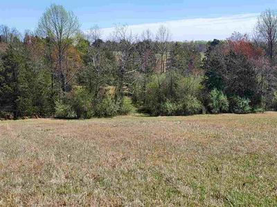 0 N SEMINOLE TRAIL, LEON, VA 22725 - Photo 2