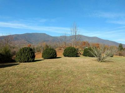 744B LEVEL GREEN RD, ROSELAND, VA 22967 - Photo 2