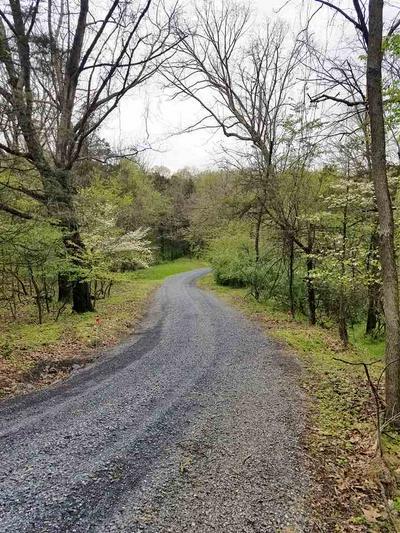 3878 SHUTTERLEE MILL RD, STAUNTON, VA 24401 - Photo 2