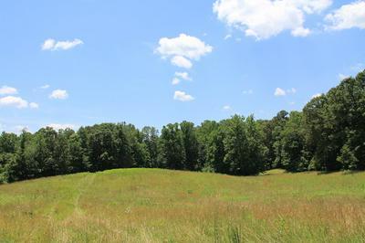 S BLUE RIDGE TPK, Rochelle, VA 22738 - Photo 1