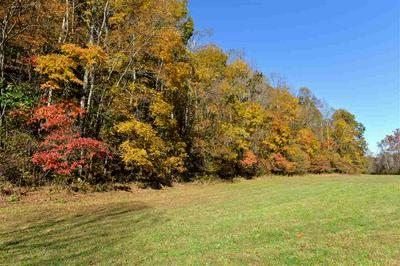 TBD BERRY HILL RD, FABER, VA 22938 - Photo 2