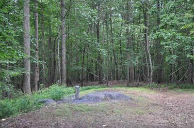 TBA ENNIS MOUNTAIN RD, AFTON, VA 22920 - Photo 2