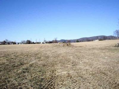 0 RED BRUSH RD, ELKTON, VA 22827 - Photo 1