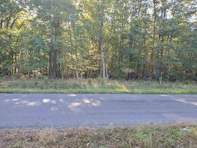0 BLACK WALNUT RUN RD, RHOADESVILLE, VA 22542 - Photo 2