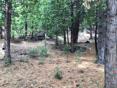1778 SIERRA PKWY, Arnold, CA 95223 - Photo 1