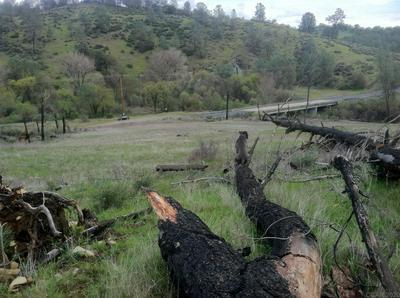 0 HIGHWAY 49 # NSA, San Andreas, CA 95249 - Photo 2