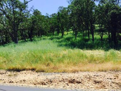 0 LAKEFRONT DRIVE # LOT 17, Jamestown, CA 95327 - Photo 2