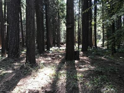 2730 HANGTREE TRL, Arnold, CA 95223 - Photo 1