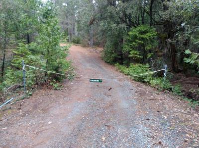 725 WOLVARINE MINE RD, Glencoe, CA 95232 - Photo 2