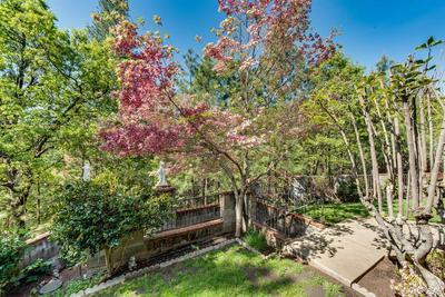 5685 DARBY RUSSELL RD, Murphys, CA 95247 - Photo 2