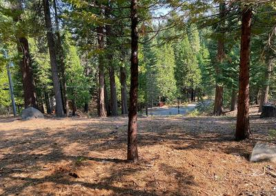 1362 SHOSHONE DR, Camp Connell, CA 95223 - Photo 2