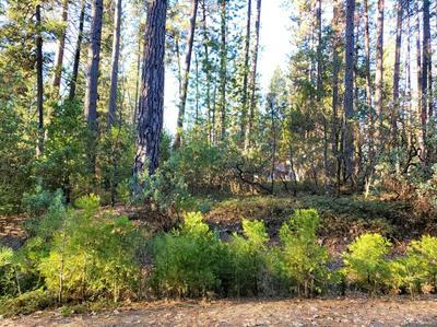 419 BIRD DOG CIR, Avery, CA 95224 - Photo 1