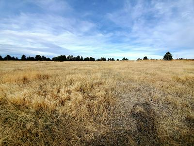 LOT 4 STORMY HEIGHTS SUBDIVISION, Newcastle, WY 82701 - Photo 2