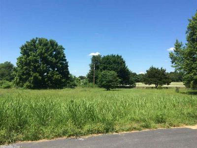 HWY 65, Western Grove, AR 72685 - Photo 2