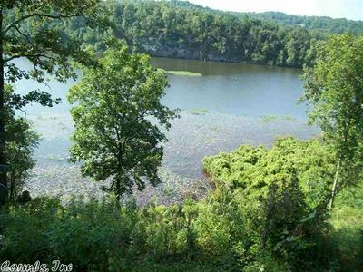 TRACT 2 LAKE BARNETT ROAD, Romance, AR 72136 - Photo 1