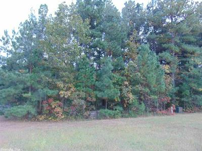 LOT 17 HOLY MTN AIRPARK, Clinton, AR 72031 - Photo 1