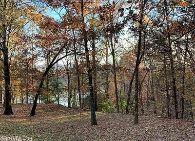 LOT 4 WOODLAND SHORES LANE, Clinton, AR 72031 - Photo 1