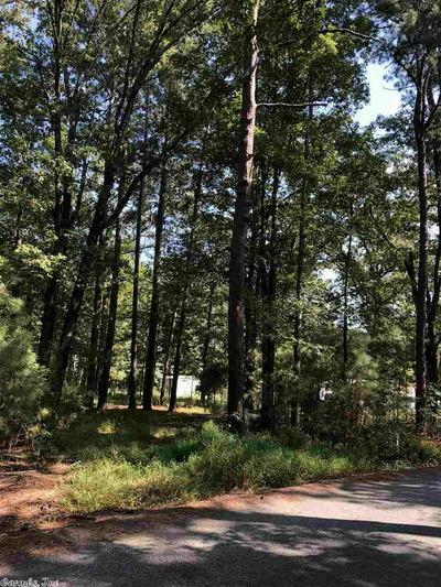 GRANT 481 ROADS, Prattsville, AR 72129 - Photo 2
