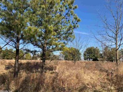 10 ACRES ON CR 963, Brookland, AR 72417 - Photo 2