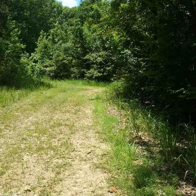 TBD FUNDERBURK RD, Murfreesboro, AR 71958 - Photo 2