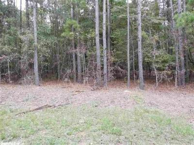 00 PLUM TREE, Traskwood, AR 72167 - Photo 2