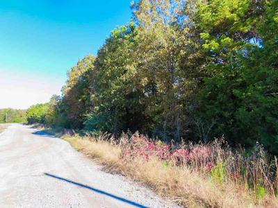 002 TRUMAN REYNOLDS DRIVE, Quitman, AR 72131 - Photo 1