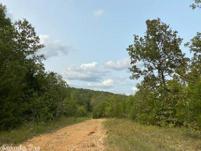 LOT 22 & 23 MCFADDEN ADDN BLUFF, Hardy, AR 72542 - Photo 1