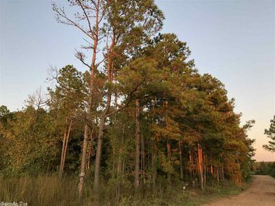 15103 N SOUR SPRINGS ROAD, Murfreesboro, AR 71958 - Photo 1