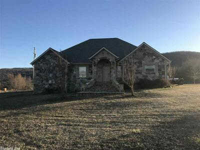 1021 SHIPMAN DR, MOUNTAIN VIEW, AR 72560 - Photo 2