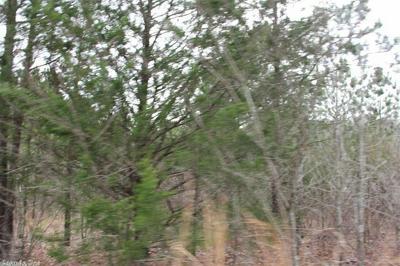 00 HWY. 16 EAST, Clinton, AR 72031 - Photo 2