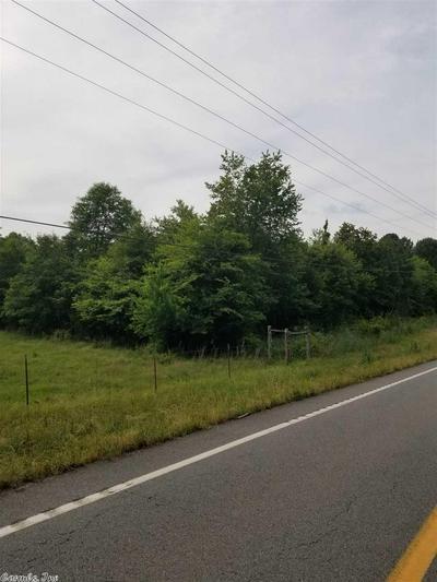 00 HWY 95 HIGHWAY, Hattieville, AR 72063 - Photo 2