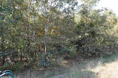 1796 HIGHWAY 178 W, Midway, AR 72651 - Photo 2