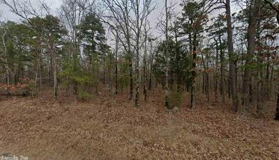 0 ROSS HOLLOW ROAD, Roland, AR 72135 - Photo 2