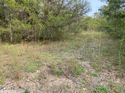 LOT 22 & 23 MCFADDEN ADDN BLUFF, Hardy, AR 72542 - Photo 2