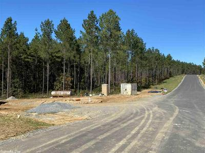 LOT 111 PARKWAY TRAIL, Bryant, AR 72011 - Photo 2