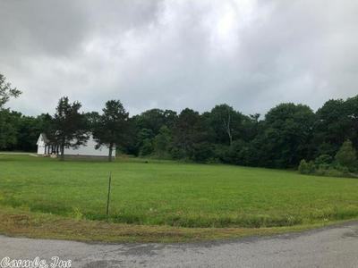 13 TRINTY GROVE RD, Batesville, AR 72501 - Photo 2