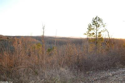 243 LOW YIELD DR, Harriet, AR 72639 - Photo 1