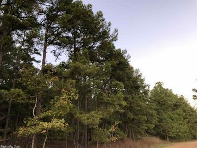 15103 N SOUR SPRINGS ROAD, Murfreesboro, AR 71958 - Photo 2