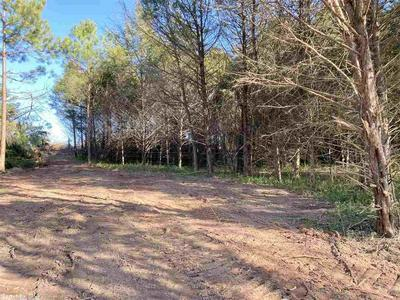 100 HAVEN HILL RD, MELBOURNE, AR 72556 - Photo 1