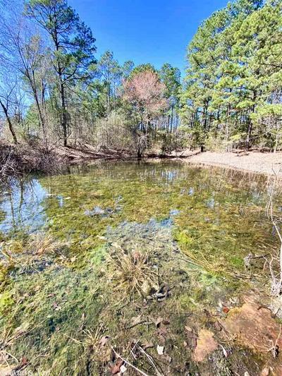 000 BAKER LAKE RD, Clinton, AR 72031 - Photo 1