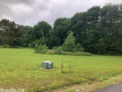 12 TRINTY GROVE RD, Batesville, AR 72501 - Photo 1