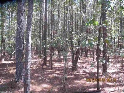 0000 RURAL, Monticello, AR 71655 - Photo 2