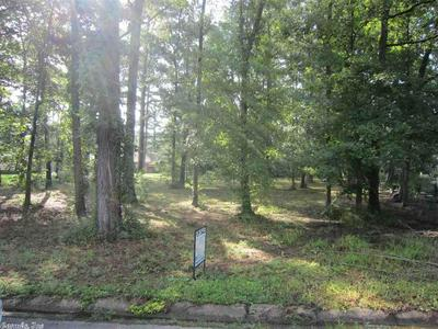 LOT 12 GLENWOOD DRIVE, MONTICELLO, AR 71655 - Photo 2