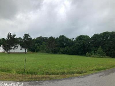 13 TRINTY GROVE RD, Batesville, AR 72501 - Photo 1