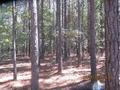 0000 RURAL, Monticello, AR 71655 - Photo 1