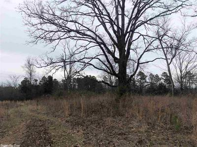 000 SILO RD, Scotland, AR 72030 - Photo 2