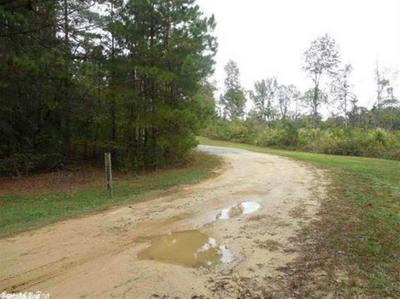 00 PLUM TREE, Traskwood, AR 72167 - Photo 1