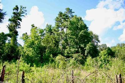 1828 ROY TAYLOR RD, Russellville, AR 72802 - Photo 2